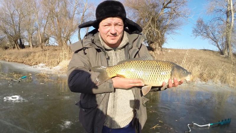видео рыбалка ловля сазана
