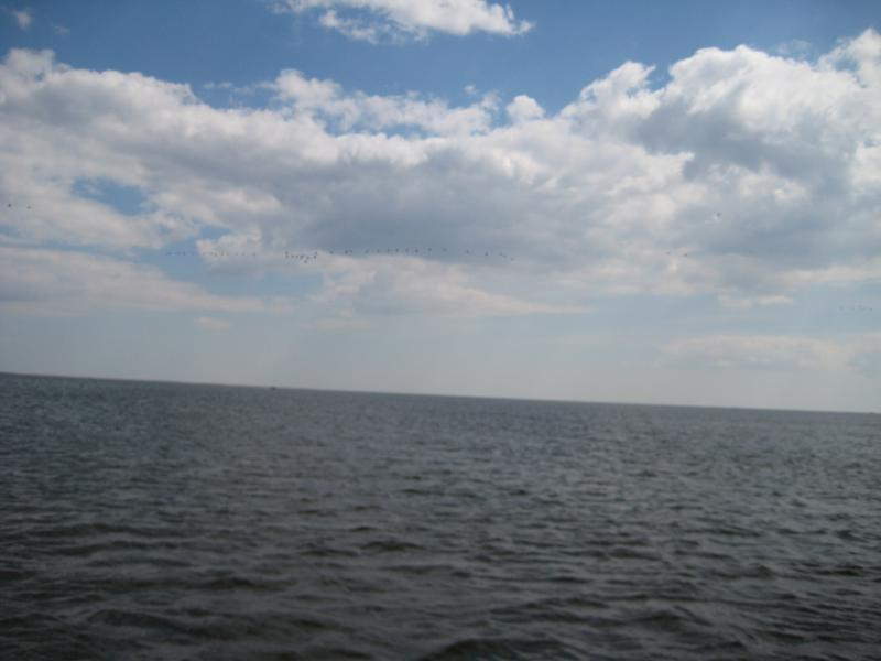 Нажмите на изображение для увеличения Название: База Новинская,НВ 17-20 апреля 2011г.. 025.jpg Просмотров: 138 Размер:36.9 Кб ID:258074