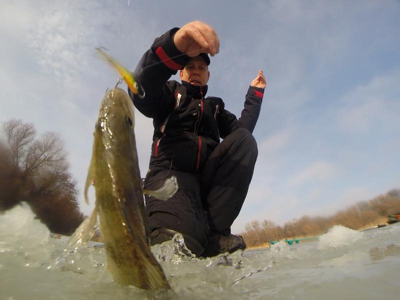 http://www.rusfishing.ru/forum/attachment.php?attachmentid=3830690&d=1483703562