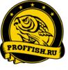 ПРОФИШ.png