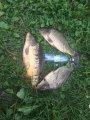 Бухловка калужская область рыбалка