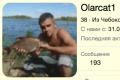Olarcat1.png