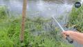 Рыбалка с Дядей Сашей - Рыбалка на фидер. Ловля леща. Cерия Рыбалка 2020, рыбалка на Десне 2...png