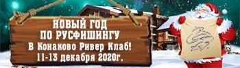 НОВЫЙ ГОД 2021! Подробнее...